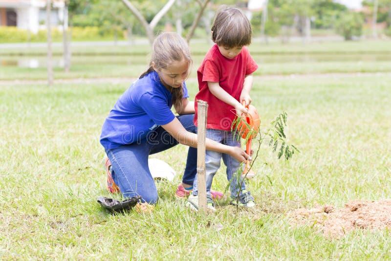 Plantação feliz da menina e do menino fotos de stock