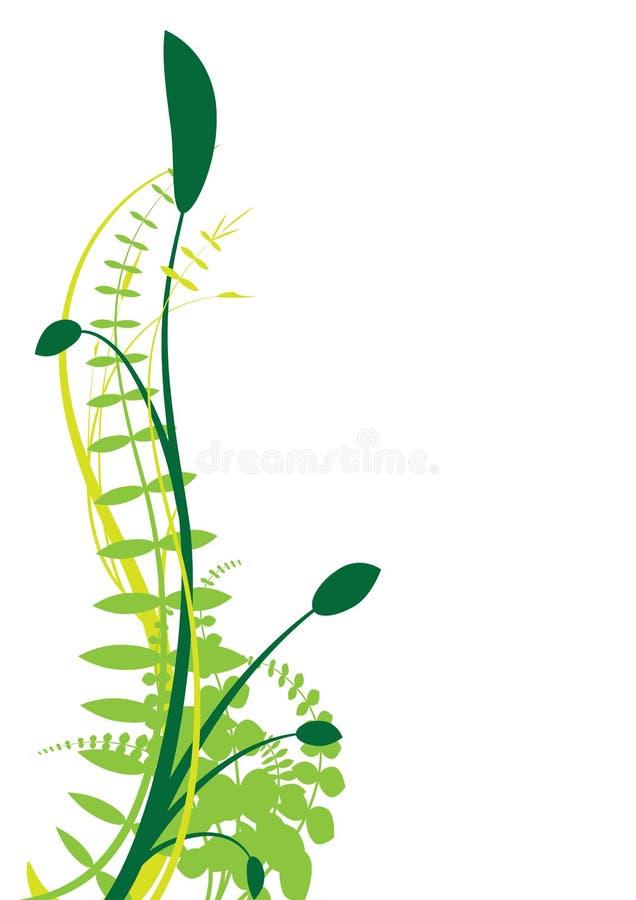 Planta abstrata do vetor ilustração stock