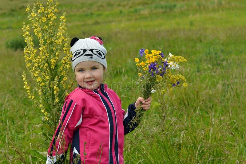 Planta alta e uma menina em um prado fotografia de stock royalty free