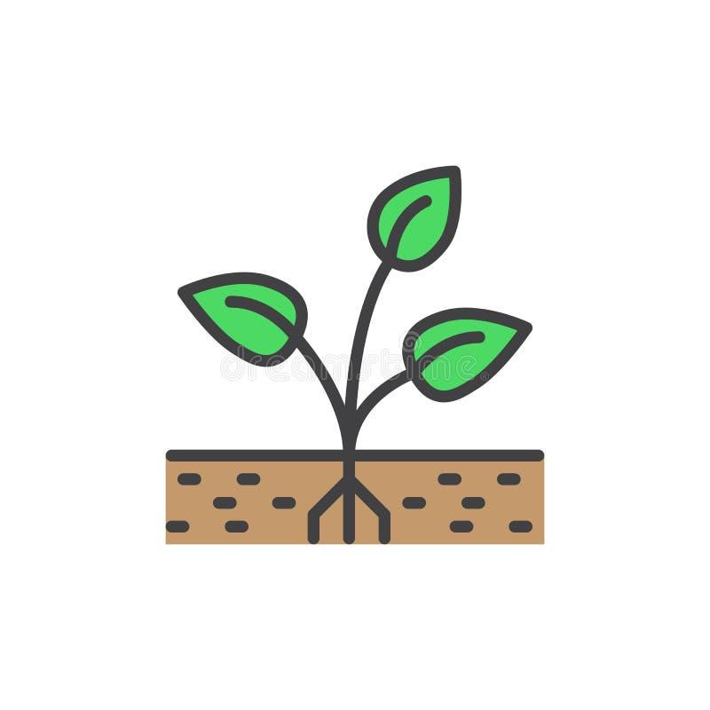 A planta, broto encheu o ícone do esboço, linha sinal do vetor, pictograma colorido linear ilustração do vetor