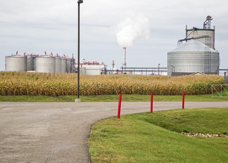 Planta cercano oeste del etanol imagen de archivo