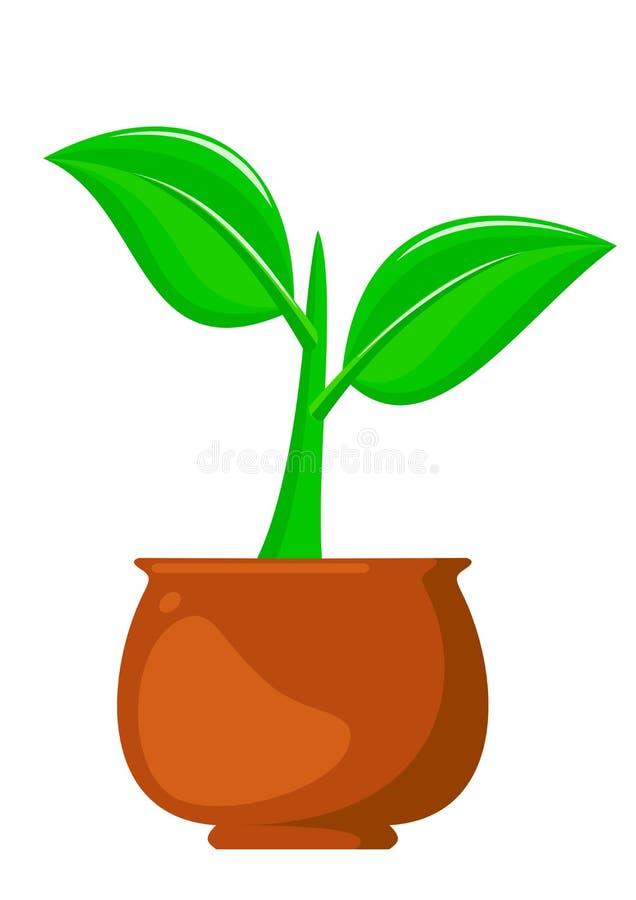 Planta creciente en el pote Ejemplo verde de la vida ilustración del vector