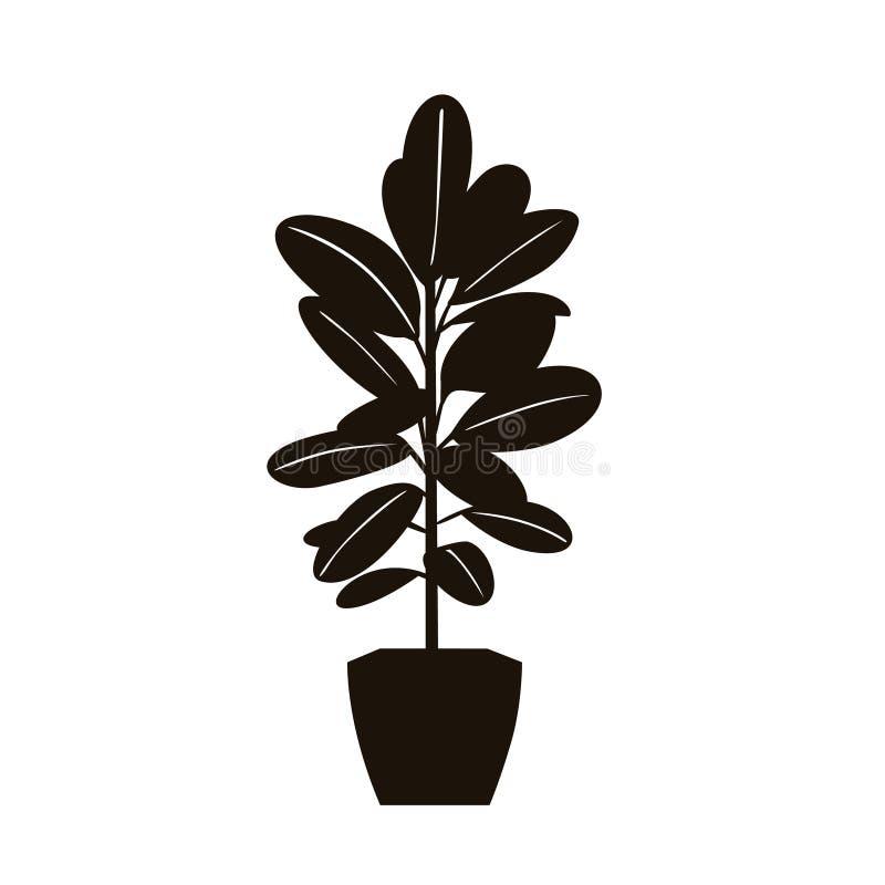 Planta da árvore da borracha em uma silhueta do potenciômetro na cor preta ilustração do vetor
