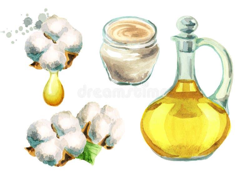 Planta de algodão, óleo de sementes de algodão, creme com extratos do algodão Ilustrações da aquarela ajustadas ilustração royalty free