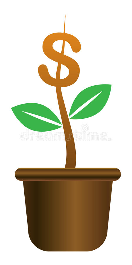Planta de dinheiro ilustração royalty free