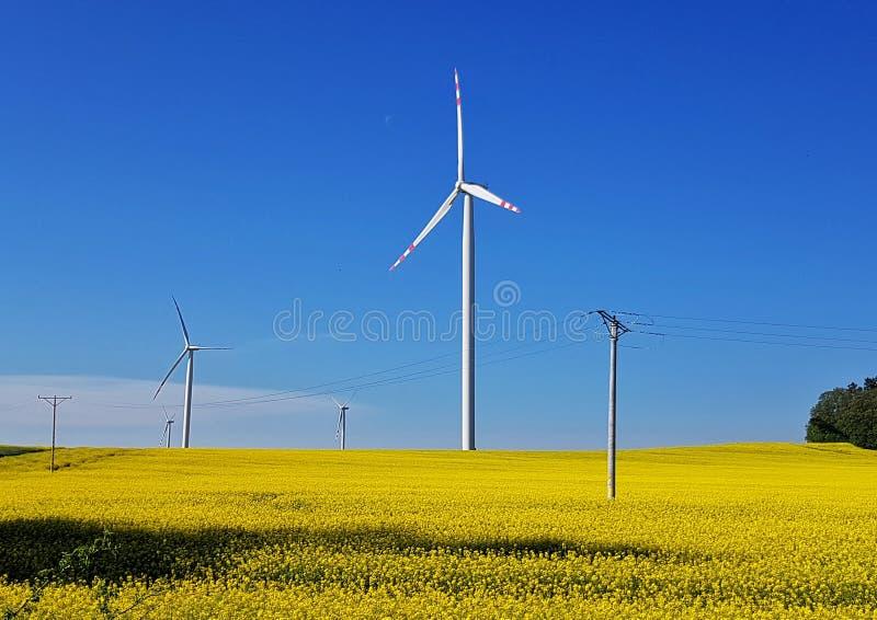 Planta de energias eólicas foto de stock