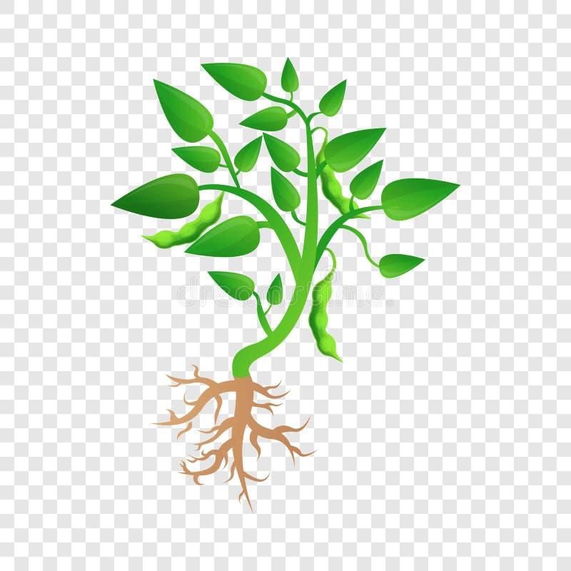 Planta de feijão de soja para crescer acima o ícone, estilo dos desenhos animados ilustração stock