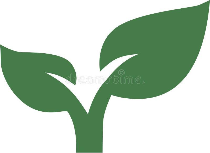 Planta de jardinagem da folha ilustração do vetor