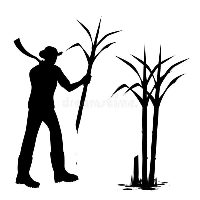Planta de la caña de azúcar de la cosecha de la forma de la historieta de la silueta stock de ilustración