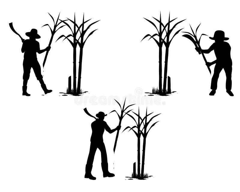 Planta de la caña de azúcar de la cosecha de la forma de la historieta de la silueta libre illustration