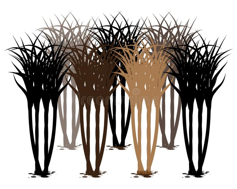 Planta de la caña de azúcar de la silueta ilustración del vector