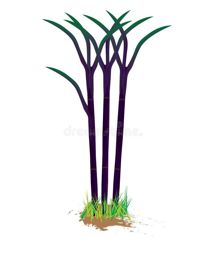 Planta de la caña de azúcar ilustración del vector