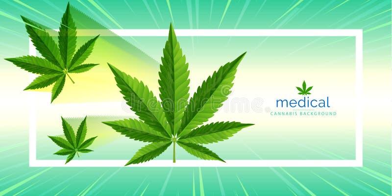 Planta de marijuana y cáñamo en CBD, fondos libre illustration