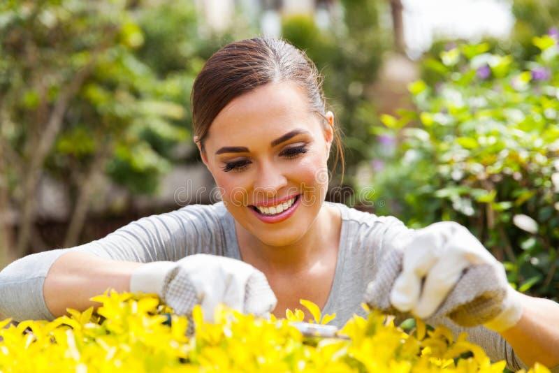 Planta de poda da mulher foto de stock royalty free