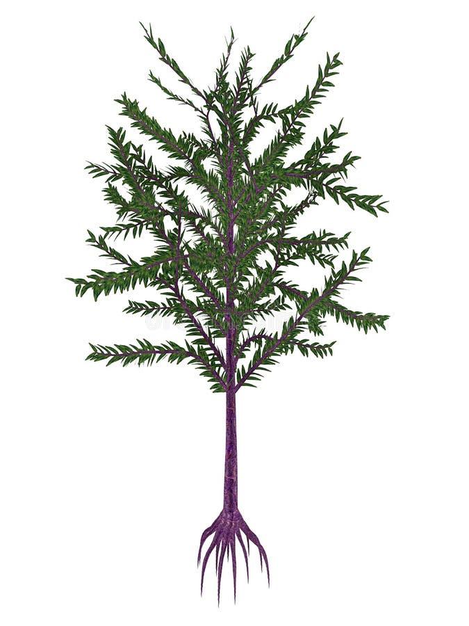 Planta de semilla prehistórica de Dicroidium - 3D rinden stock de ilustración