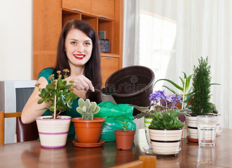 Planta de transplantação de sorriso das flores da mulher fotos de stock