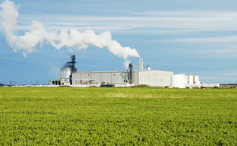 Planta del etanol fotografía de archivo