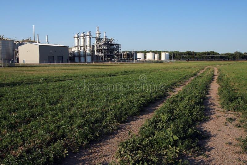 Planta del etanol en verano fotos de archivo