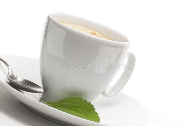 Planta del Stevia y taza de café fotos de archivo
