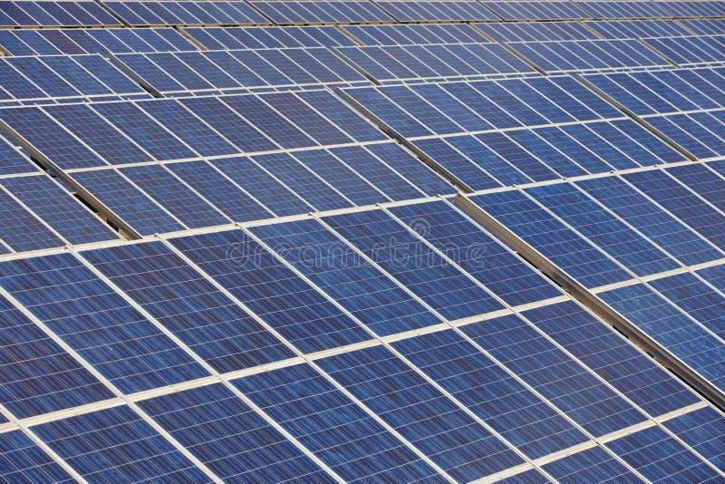 Planta do painel solar Energia renovável sustentável do poder imagem de stock royalty free