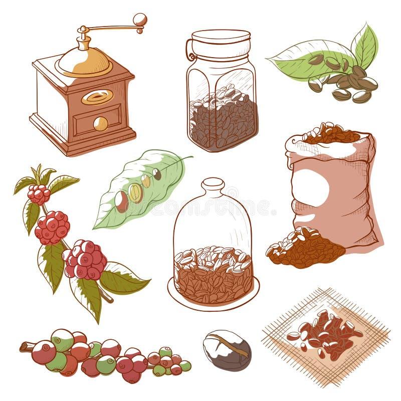 Planta e feijões do café ilustração royalty free