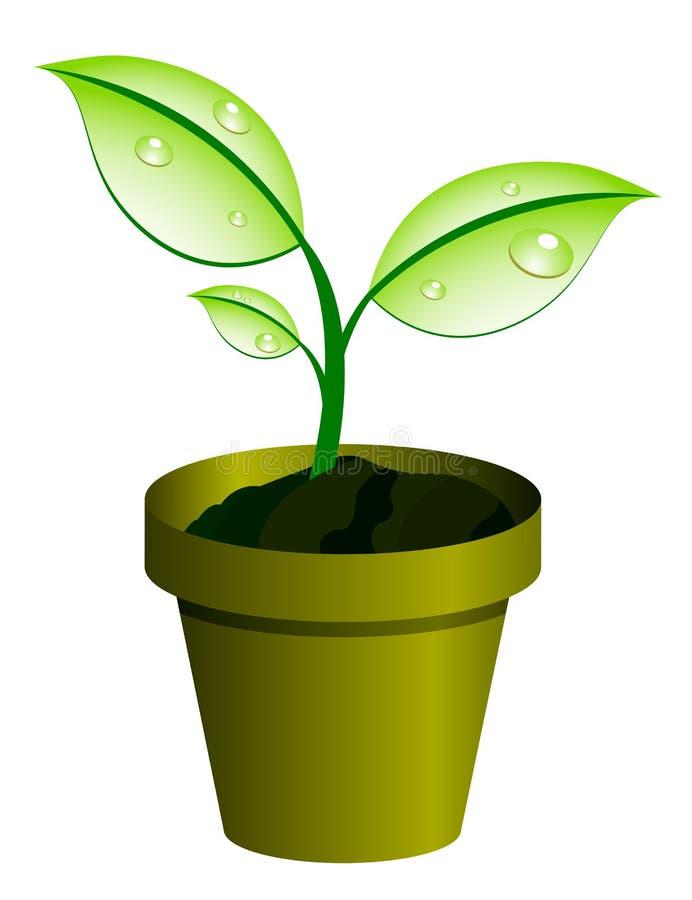 Planta en el crisol stock de ilustración