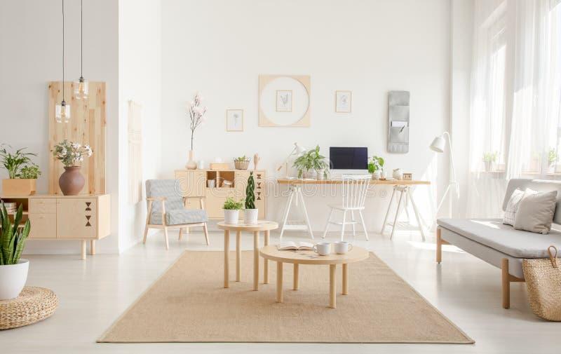 Planta en taburete cerca de las tablas de madera en la alfombra marrón en whi espacioso foto de archivo