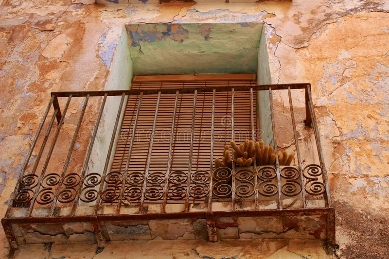 Planta en un balcón de una casa abandonada vieja foto de archivo libre de regalías