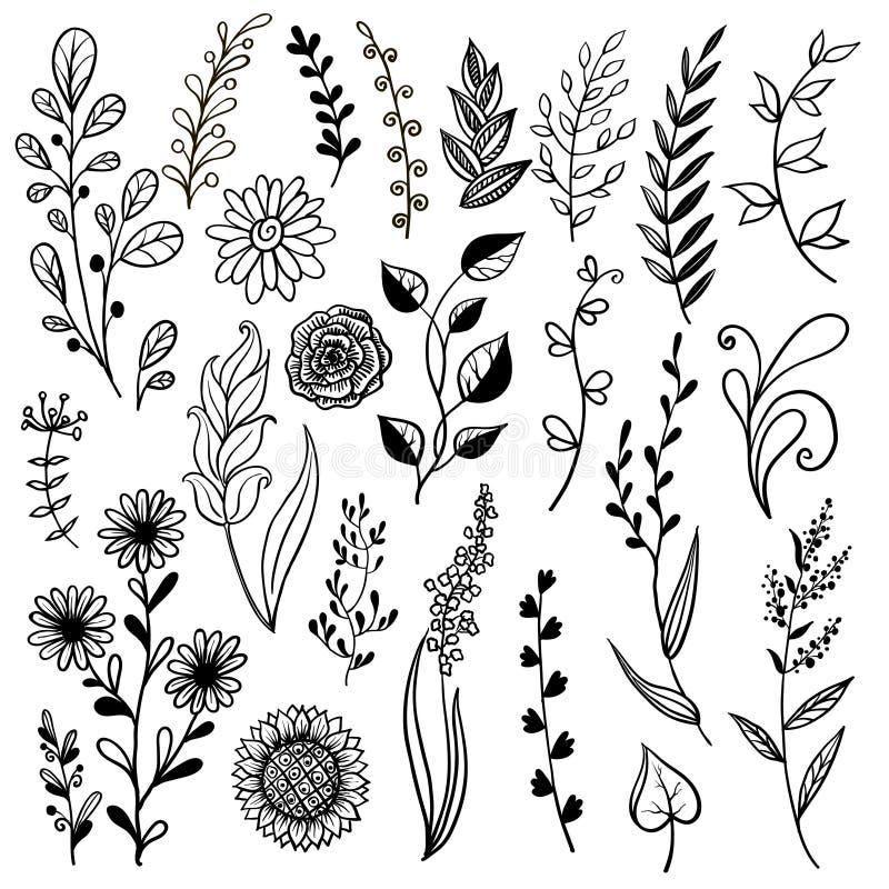 Planta exhausta de la mano, flores de la hierba stock de ilustración