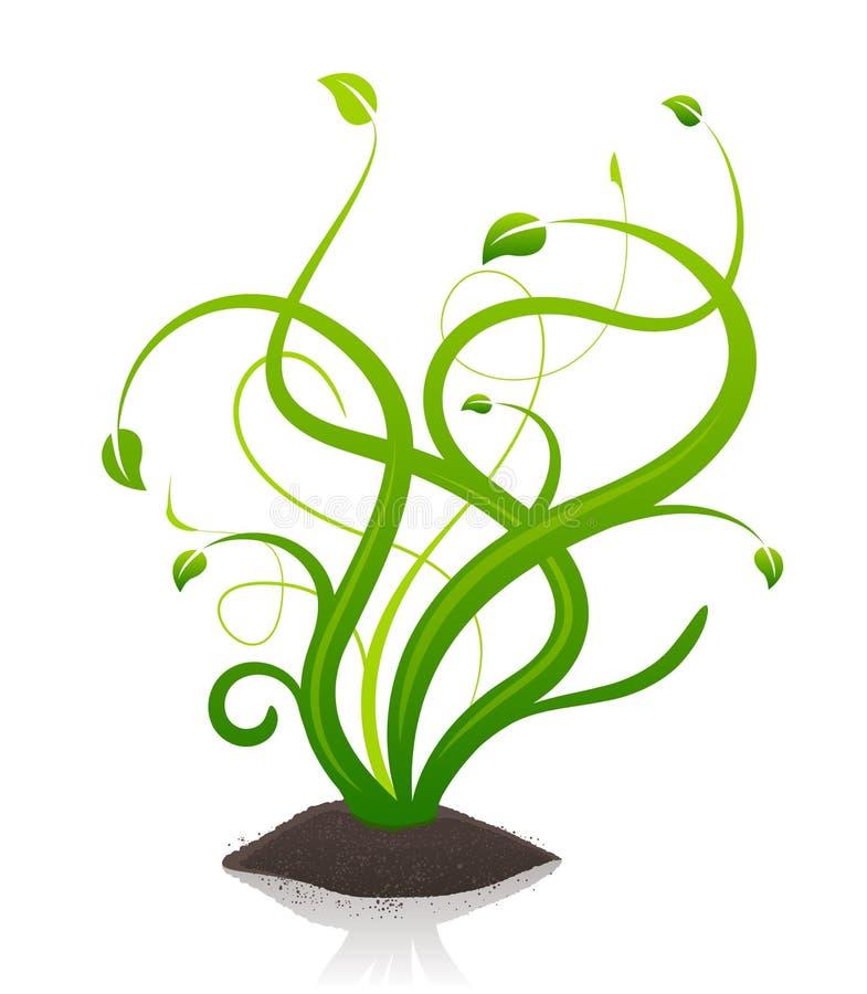 Planta floral verde stock de ilustración