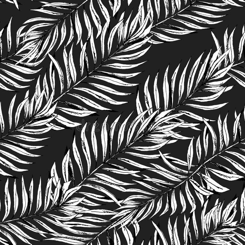 Planta gráfica das folhas de palmeira do trópico Fundo preto e branco do estilo da cópia, selva floral exótica ilustração royalty free