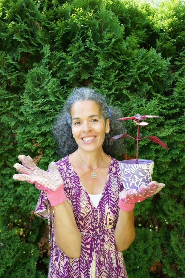 Planta madura de sorriso de Bloodleaf do potenciômetro de flor da terra arrendada da mulher imagem de stock