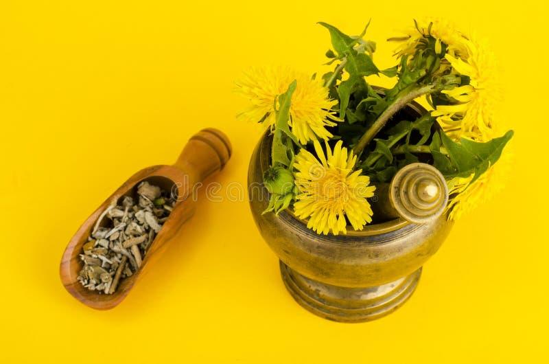 Planta medicinal en mortero Medicina alternativa fotos de archivo