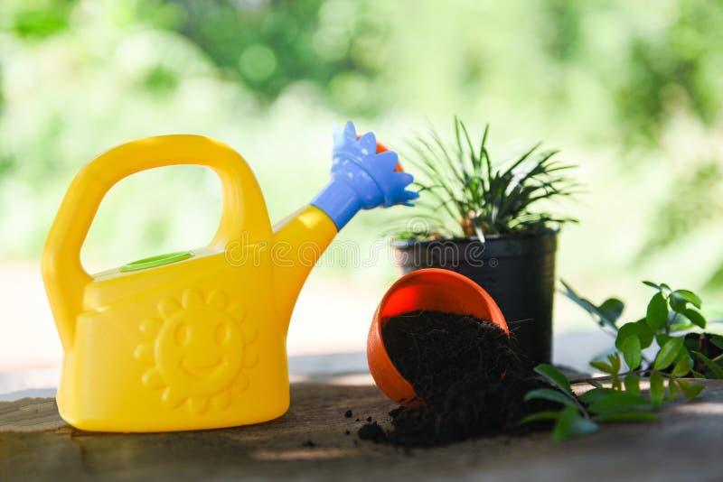 Planta molhando com a lata molhando e o potenciômetro coloridos no jardim - conceito das ferramentas de jardinagem imagens de stock royalty free