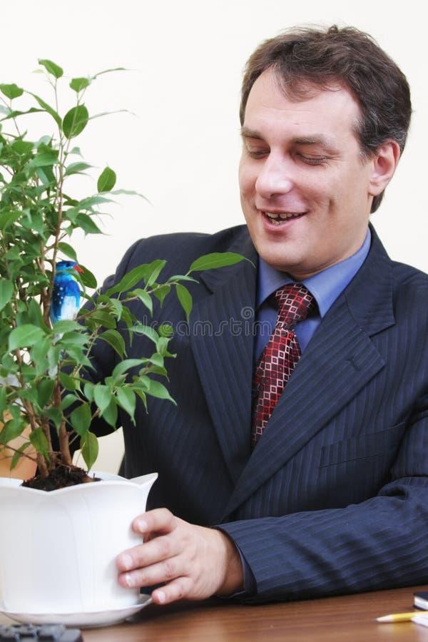 Download Planta Molhando Do Homem De Negócios Positivo Foto de Stock - Imagem de contemporary, planta: 12802832