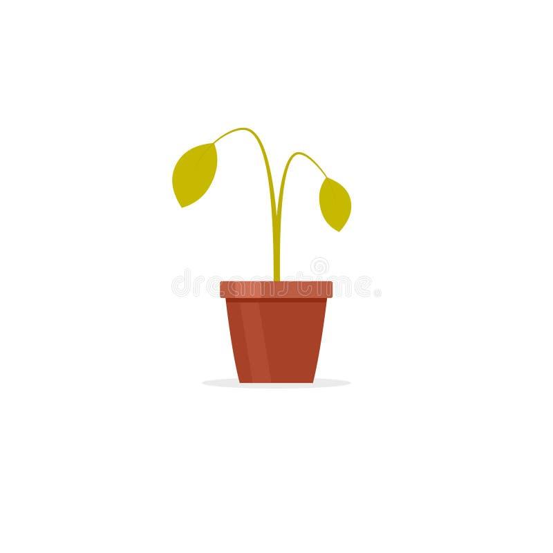 Planta muerta en pote libre illustration