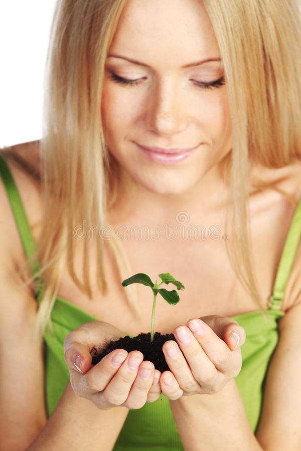Planta nas mãos louras fotografia de stock