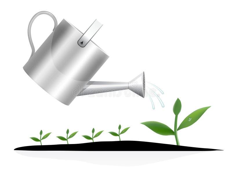 Planta nova com lata molhando ilustração stock