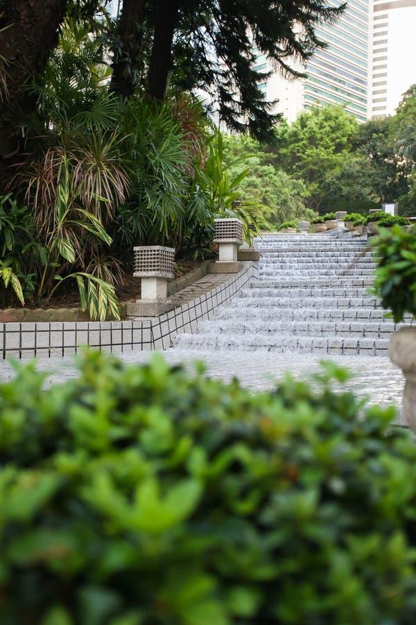 Planta ornamental de la palmera con la fuente de la cascada de la cascada en jardín tropical imágenes de archivo libres de regalías