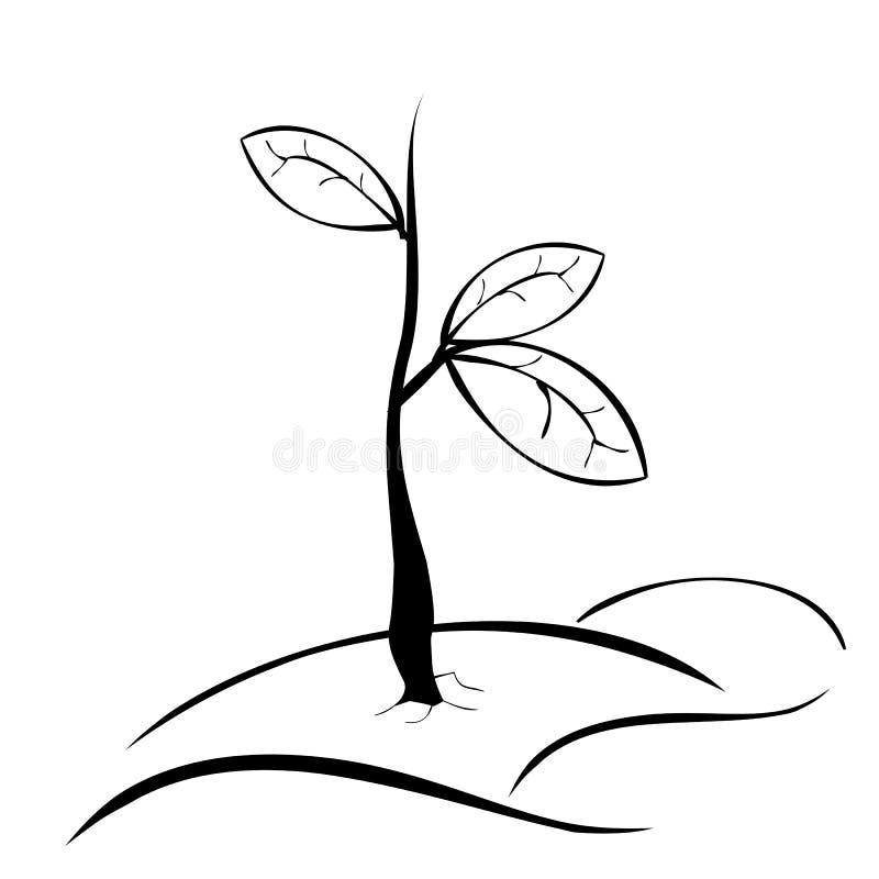 Planta pequena preto e branco do esboço simples da tração da mão com a folha três ilustração do vetor