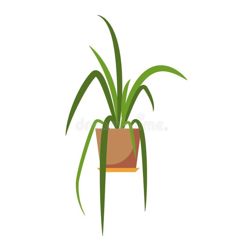 Planta Potted ilustração royalty free