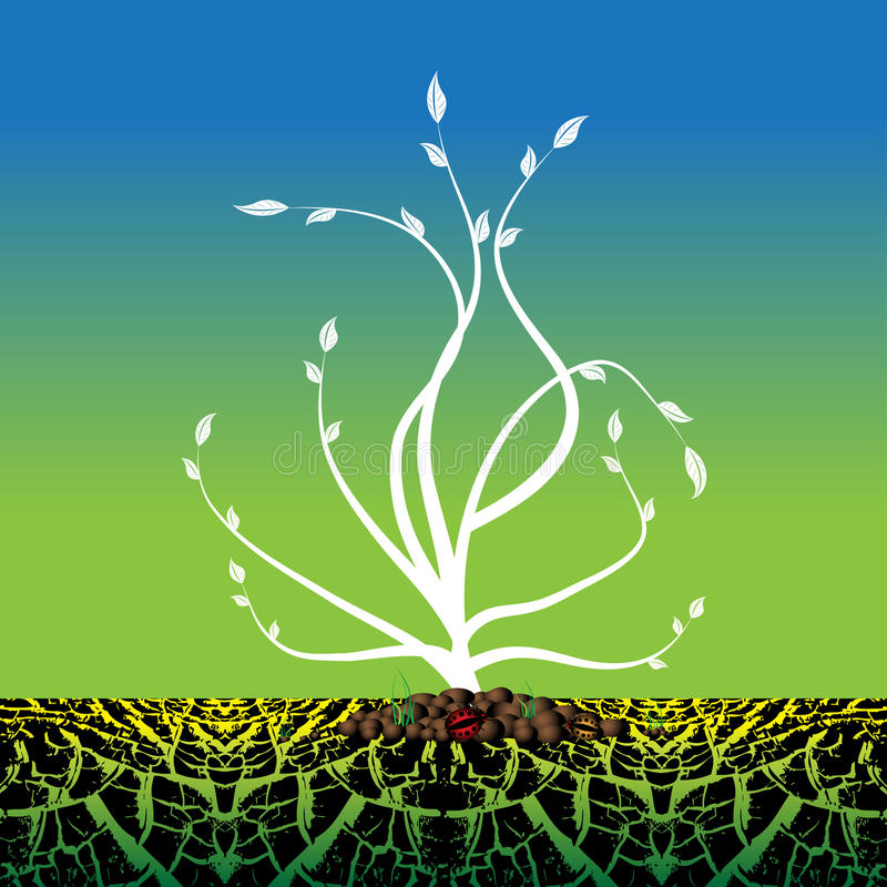 Planta que cresce do solo seco ilustração royalty free