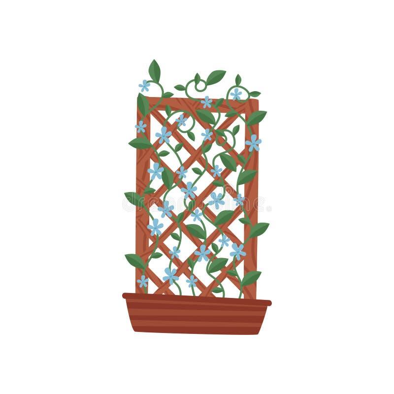 Planta que sube con las pequeñas flores azules en pote marrón con enrejado de madera Tema que cultiva un huerto Icono plano del v stock de ilustración