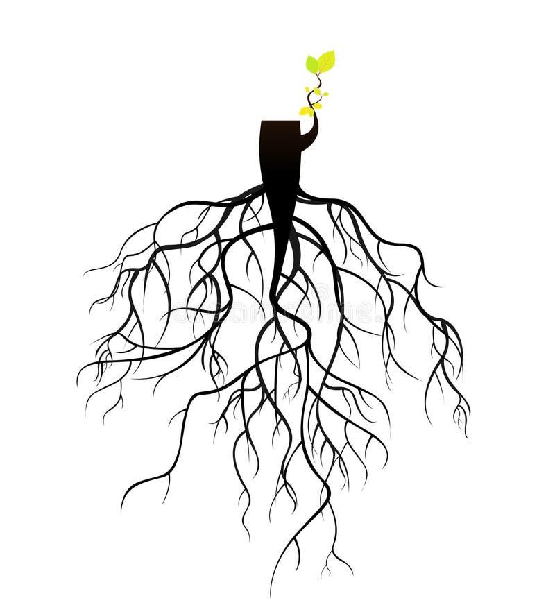 planta renascido em raizes do topo da árvore ilustração stock