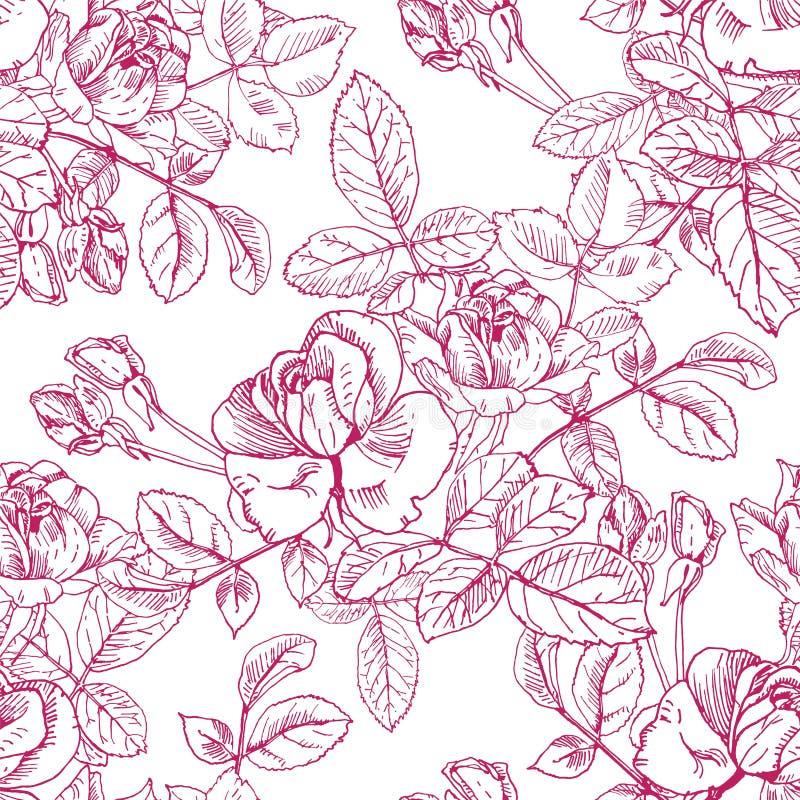 Planta salvaje de las rosas con las flores en tinta roja Modelo superficial inconsútil del vector de la mano del estilo exhausto  libre illustration