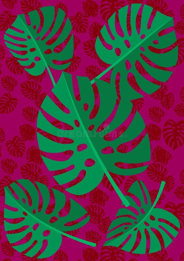 Planta tropical de Monstera de la hoja aislada en fondo rojo de la textura Ilustración del vector ilustración del vector
