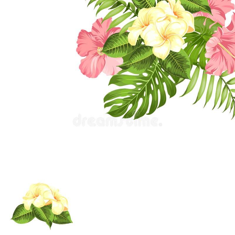 Planta tropical do hibiscus da flor Cartão do convite das férias de verão com a festão floral com lugar do texto Plumeria tropica ilustração royalty free