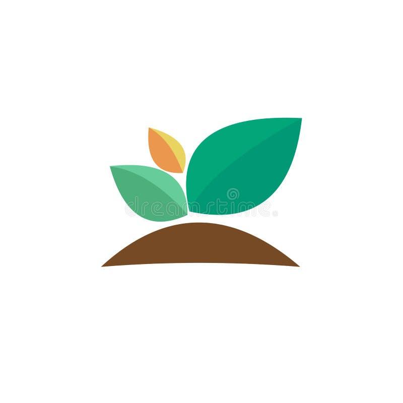 Planta verde Bud Grow Vector de Illustrationn imagen de archivo libre de regalías