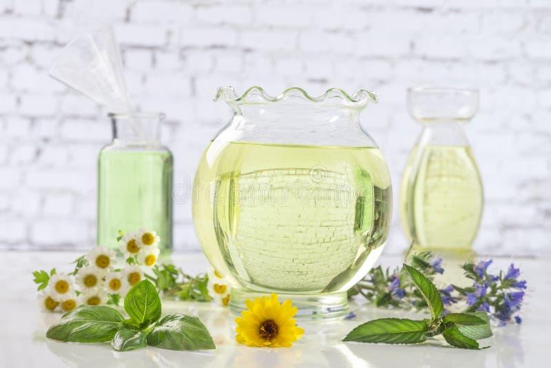 Planta verde del Aromatherapy y botle frescos de las flores del aceite esencial imagen de archivo libre de regalías