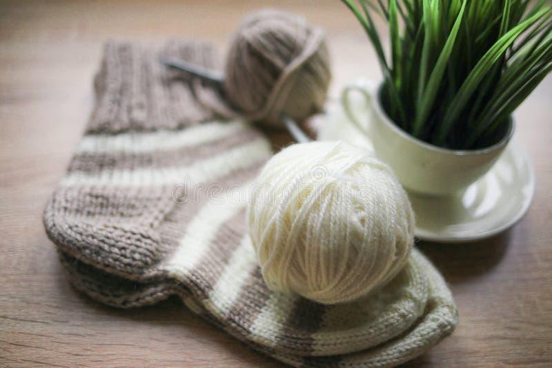 A planta verde no fio do potenciômetro, o bege e o branco, Knitted listrou a peúga bege-bege está na tabela fotografia de stock royalty free
